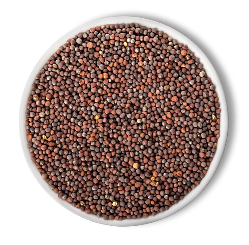 Mustard Seeds 14 oz