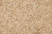 Cumin Seeds 7 oz