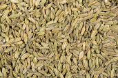 Fennel Seeds 7 oz